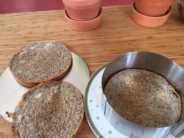 Himbeer-Mandel-Biskuit-Torte
